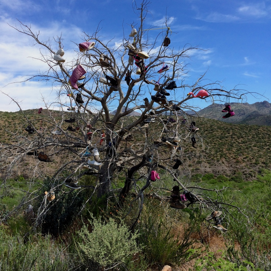 Shoe Tree on Highway 188